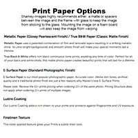 Professional Grade Paper Options